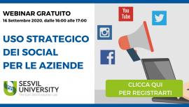 Webinar Uso Strategico dei Social per le Aziende - Sesvil University